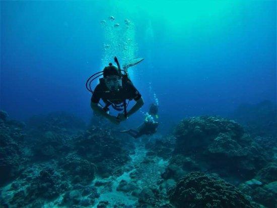 Dive Rarotonga: FB_IMG_1497404388858_large.jpg