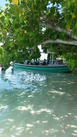 Gizo, Νήσοι Σολομώντος: 20171119_122158_large.jpg