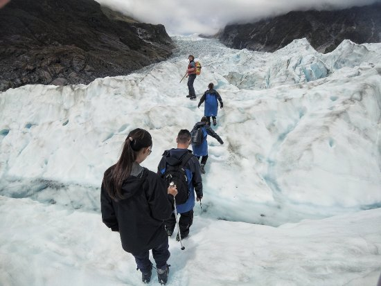 Fox Glacier Guiding: Hiking on the carved out paths