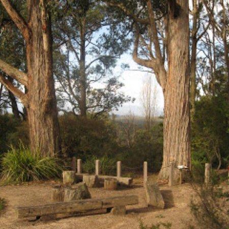 Kalorama, ออสเตรเลีย: Karwarra Australian Plant Garden