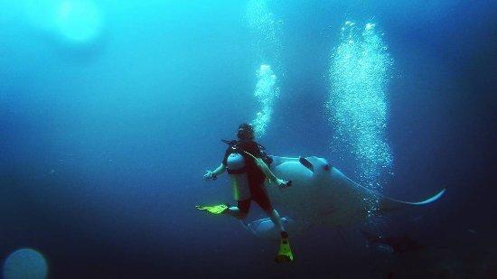 Kanuhuraa: Seeing Manta rays on an open water dive