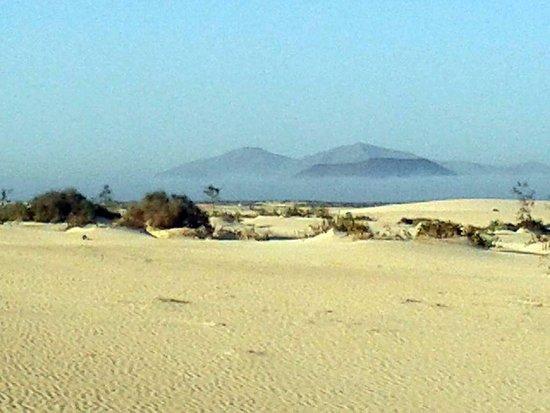Humankind Healing Massage: Humankind Fuerteventura Nature & Wildlife
