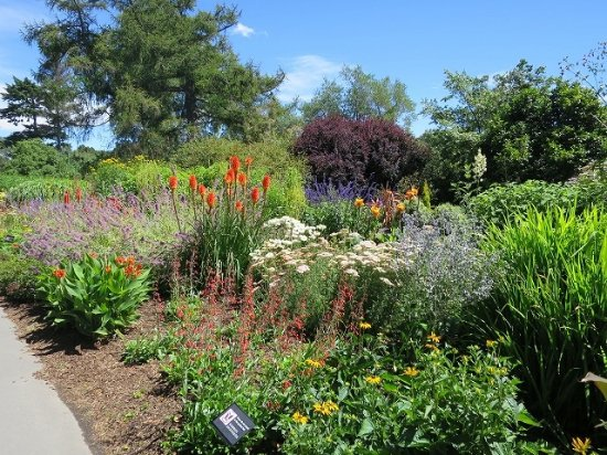 Picture of christchurch botanic gardens for Gardening services christchurch