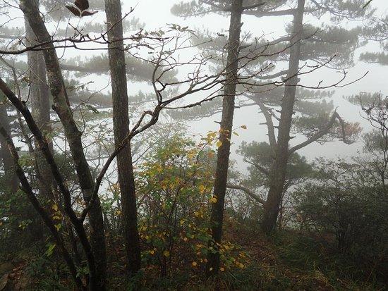 Mt. Huangshan (Yellow Mountain) Photo