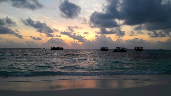 Coco Palm Dhuni Kolhu Photo