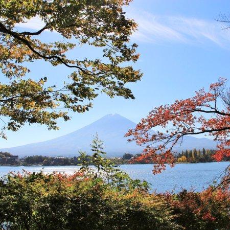 Lake Kawaguchi Ohashi Bridge: photo1.jpg