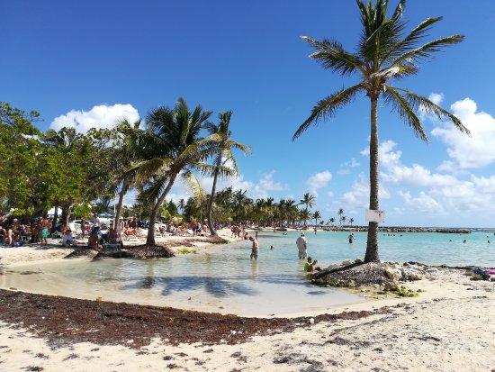 Sainte-Anne, Guadeloupe: Vista dalla spiaggia