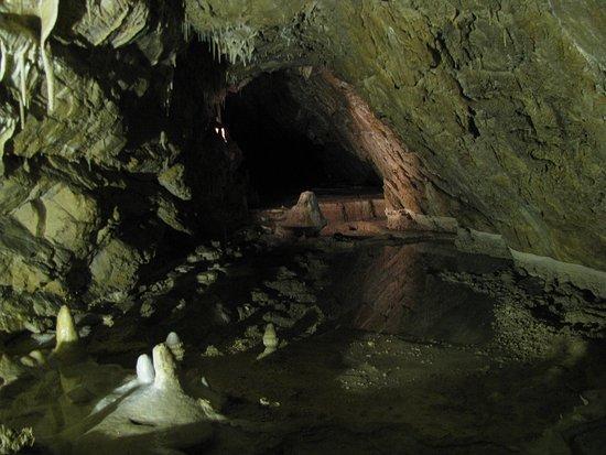 Stronie Slaskie, Polen: Jaskinia Niedźwiedzia #24