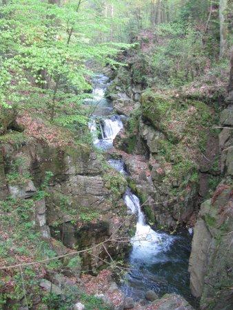 Miedzygorze, Poland: Wodospad Wilczki