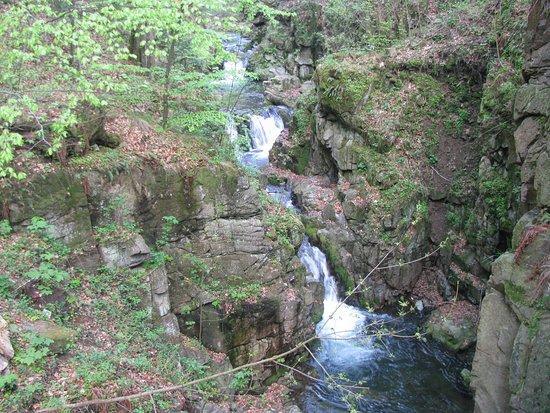 Miedzygorze, Poland: Wodospad Wilczki #2