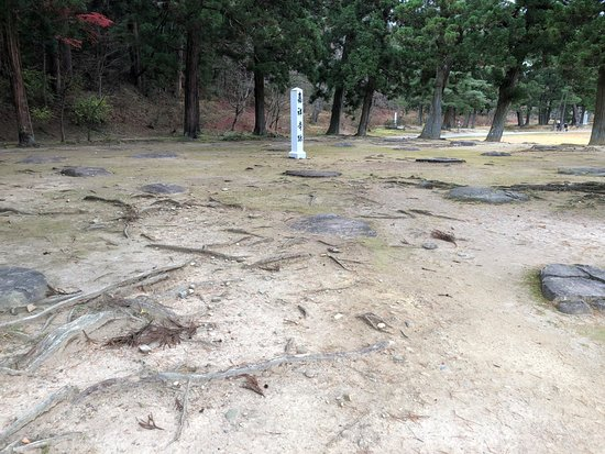 Motsu-ji Temple: 堂塔の基壇と礎石