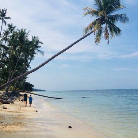 Coconut Paradise Resort: photo0.jpg