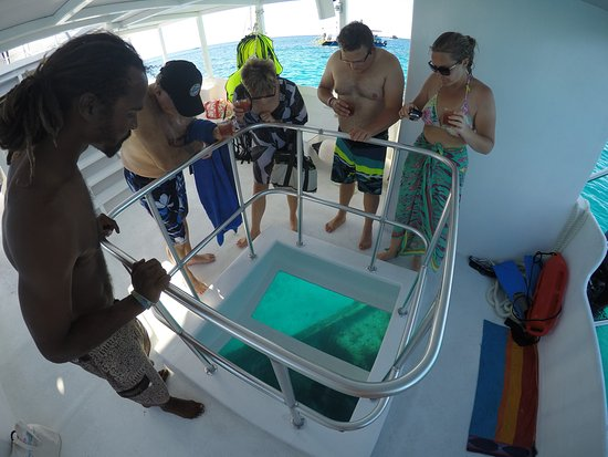 Saint James Parish, Barbados: Our Glass Bottom  Boat Tranquility Cruises