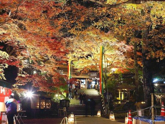 Kiyama-cho, Japon : 大興善寺紅葉ライトアップ