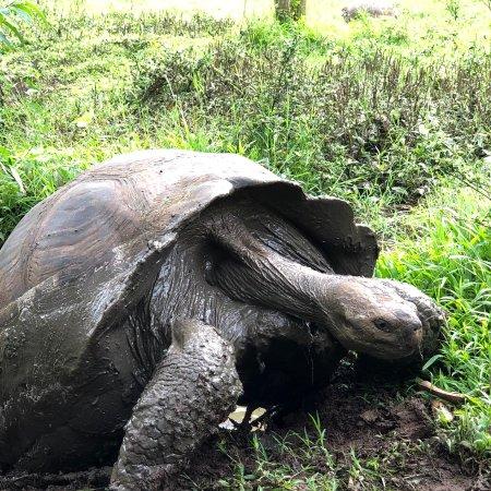 Galapagos Safari Camp: photo2.jpg