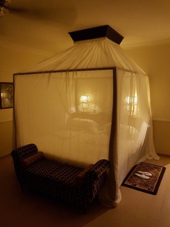 Hotel Riu Palace Zanzibar: Rummet gjordes ordning för kvällen men vi hade inte problem med några kryp på rummet!