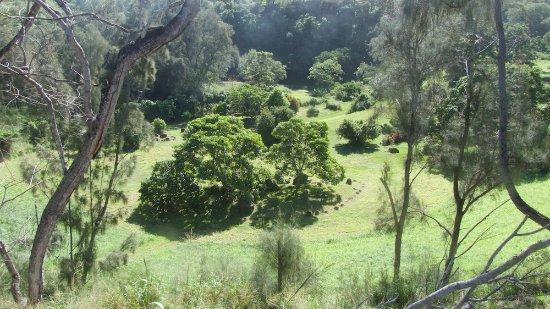 Hawaii Island Retreat at Ahu Pohaku Ho`omaluhia : View from hilltop where yurts are located