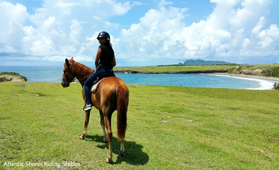 Horse Ride At Honeymoon Beach In St