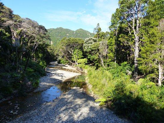Great Barrier Island, Nova Zelândia: Kaiaraara River near Hut
