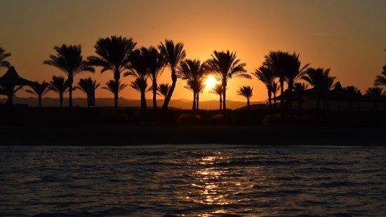 Jaz Dar El Madina Photo