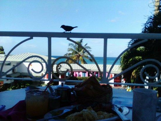 Gem Holiday Beach Resort: English Breakfast on the balcony(plus visitor)
