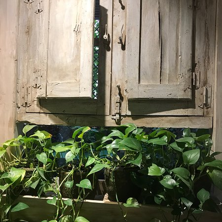 Kuva jard n secreto salvador bachiller for Jardin secreto salvador bachiller