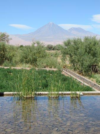 Tierra Atacama Hotel & Spa: View from Dining room/bar
