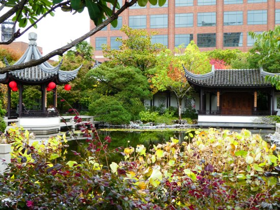 20171215 114020 Picture Of Lan Su Chinese Garden Portland Tripadvisor