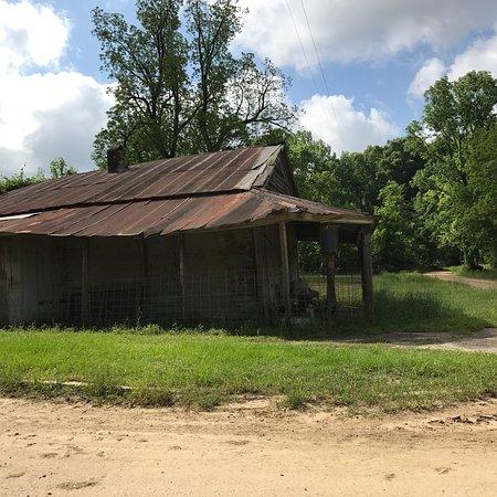 Mississippi: photo9.jpg