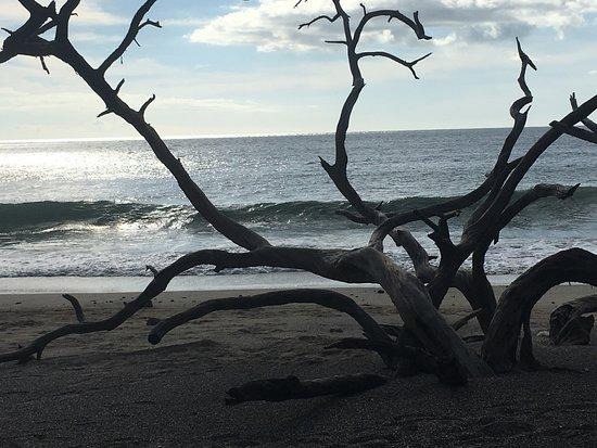 Playa Avellana : photo0.jpg