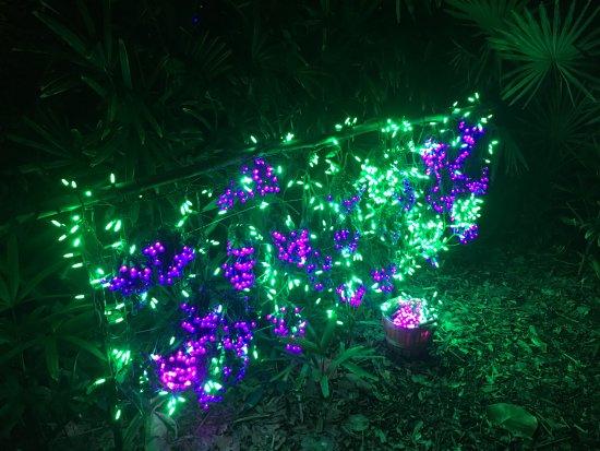 Fort Pierce, FL: Christmas at Heathcote Botanical Gardens