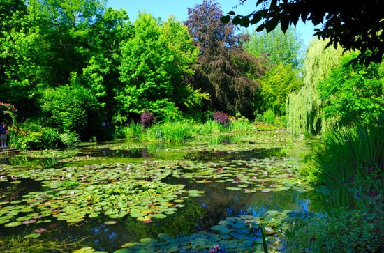 Giverny - Auvers Van Gogh Full Day