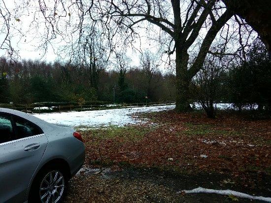 Birchanger, UK: IMG_20171213_113759_large.jpg