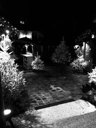 Le Moulin de Lily: photo2.jpg