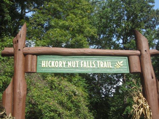 Chimney Rock, Северная Каролина: towards the falls