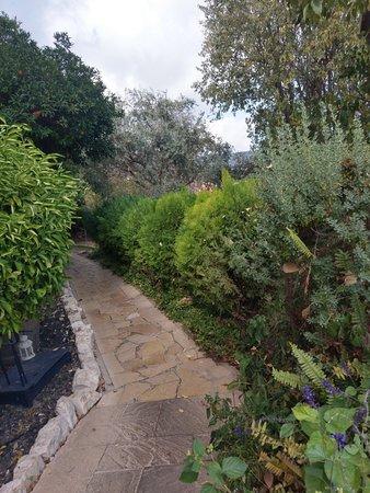 Rosh Pina, Israel: השביל לשירותי המסעדה