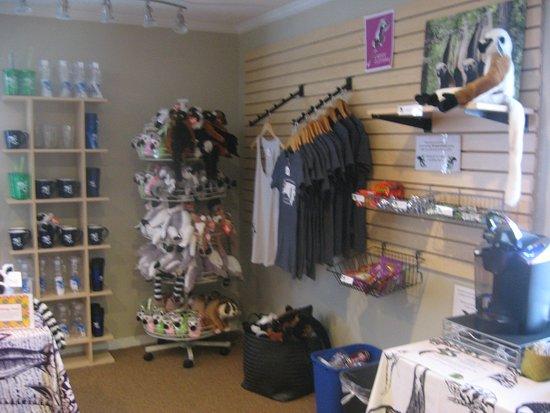 Duke Lemur Center Tour Reviews