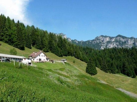 Longarone, Włochy: Malga Palughet