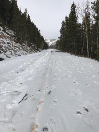 Trail Ridge Road: photo2.jpg