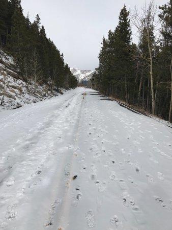 Trail Ridge Road: photo4.jpg
