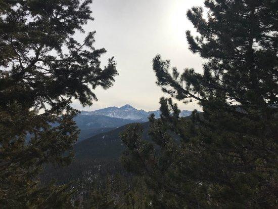 Trail Ridge Road: photo6.jpg