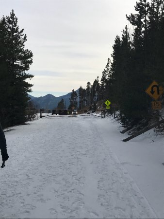 Trail Ridge Road: photo7.jpg