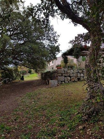 La Mortella Country Relais: 20171208_154146_large.jpg