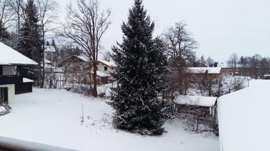 Bad Kohlgrub, Germany: vista dalla camera
