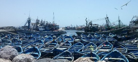 Lalla Takerkoust, Marocko: Coastal Medina day trips