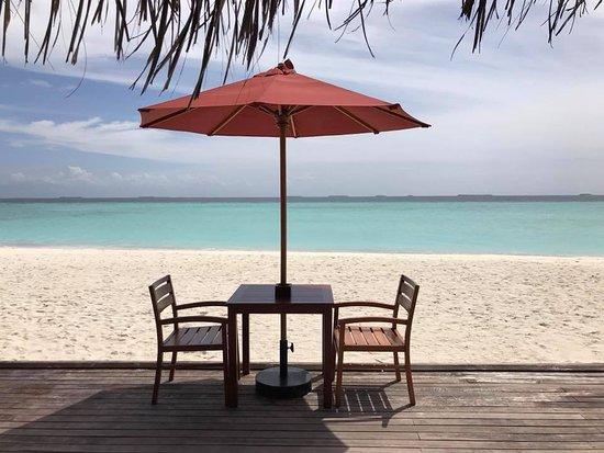 Dhigufaru Island Resort Agoda