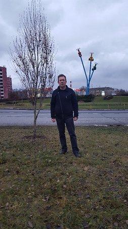 Mytishchi, Rusland: 20171217_153825_large.jpg
