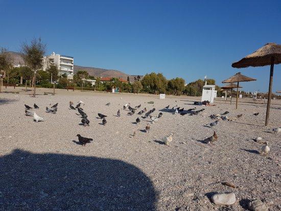 Glyfada, Hellas: empty beach