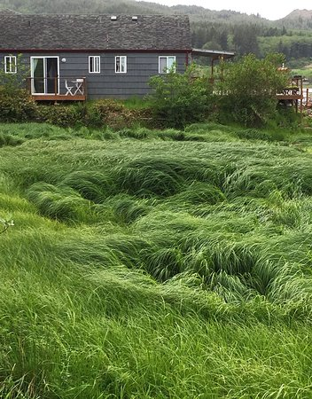 Wheeler, OR: Looking across the sea-grass to the Otter Room's balcony.