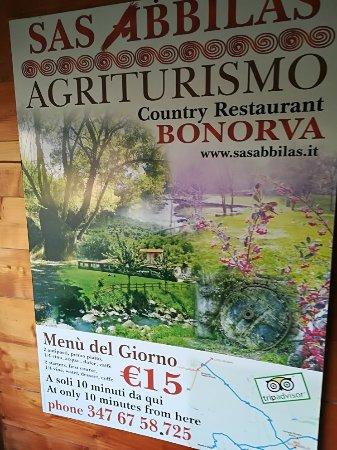 Bonorva, Italy: IMG_20171217_132732_large.jpg